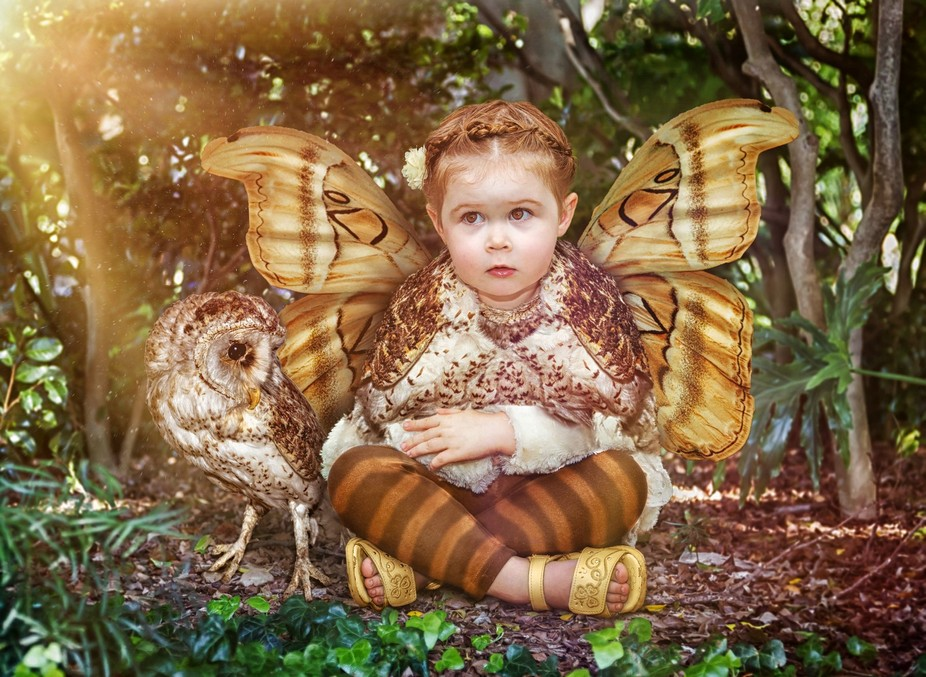 Each element in this image is an individual photograph.  The own, girl, butterfly wings and scene...
