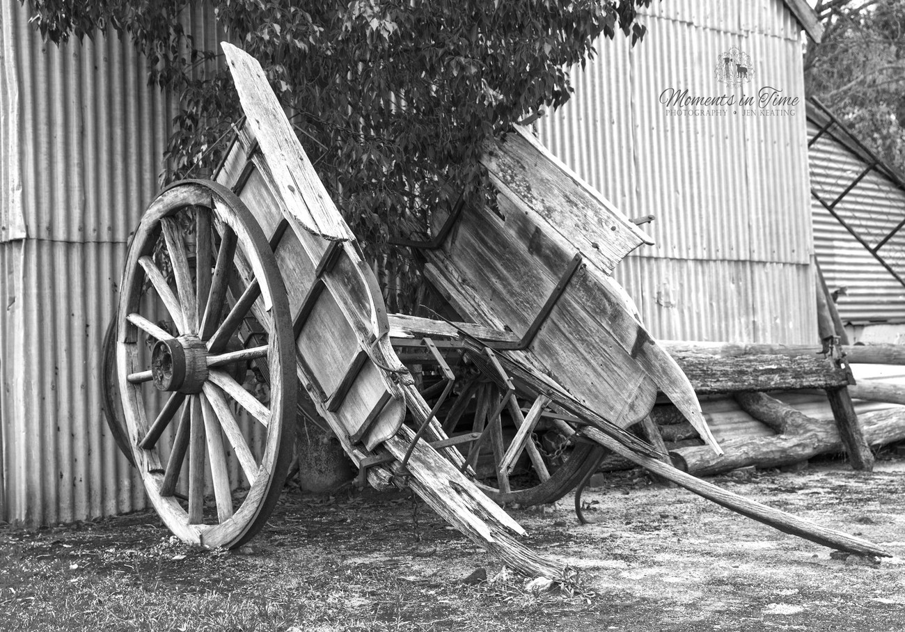 lovely old horse drawn carriage/cart/ rest peacefully.