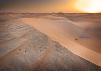 Empty quarter...or is it?