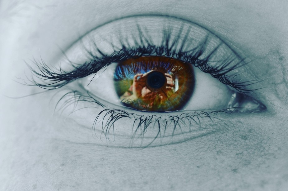 Capturing the complexity and the wonder of the human eye.