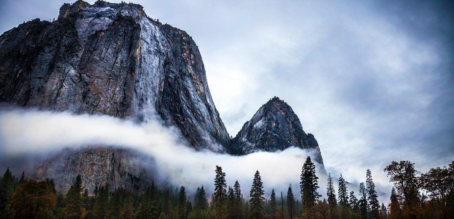Foggy morning at Yosemite National Park
