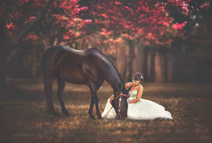 Best Friends by lisablevins - Here Comes The Bride Photo Contest