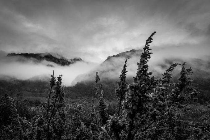 Misty Morning by masonunrau - Mist And Drizzle Photo Contest