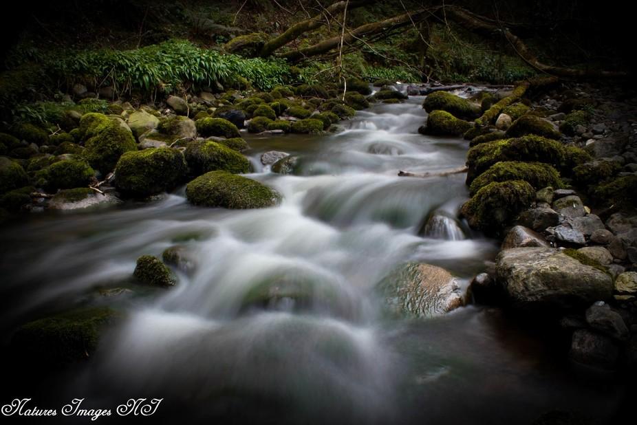 Fairytale River