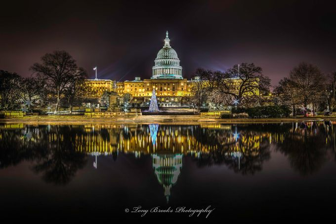 Capitol Christmas by tonybrooks - City Views Photo Contest