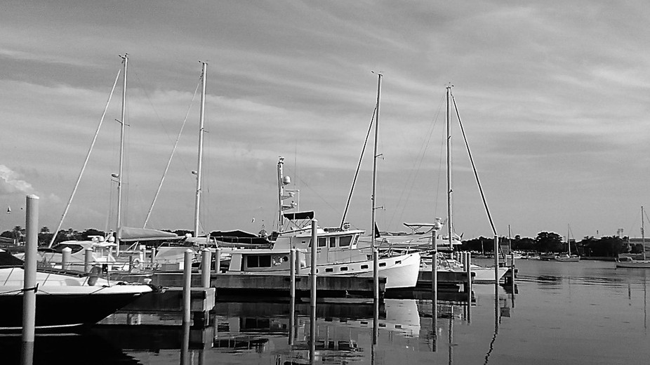 Line of boats at the St. Petersburg Harbor in florida.