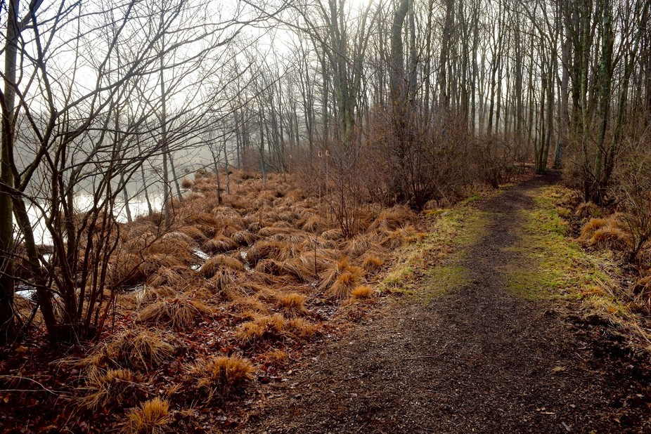 One of my favorite places to go walking is around the lake by my boyfriends house. This morning w...