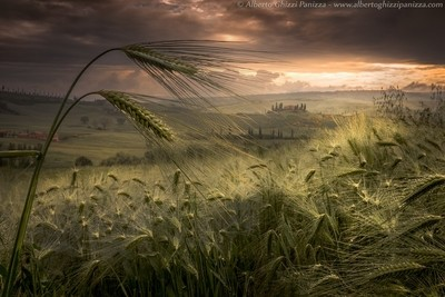 Among the whispers of the Tuscan hills