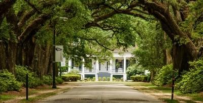 Stewart Field House on the Avenue of the Oaks