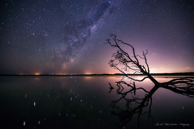**Milky Way Reflections** by damianmccudden - Silhouettes Of Trees Photo Contest