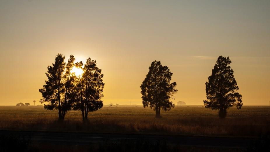Sunrise in the Freestate