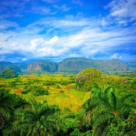 The spectacular Viñales Valley in Pinar del Rio, Cuba.
