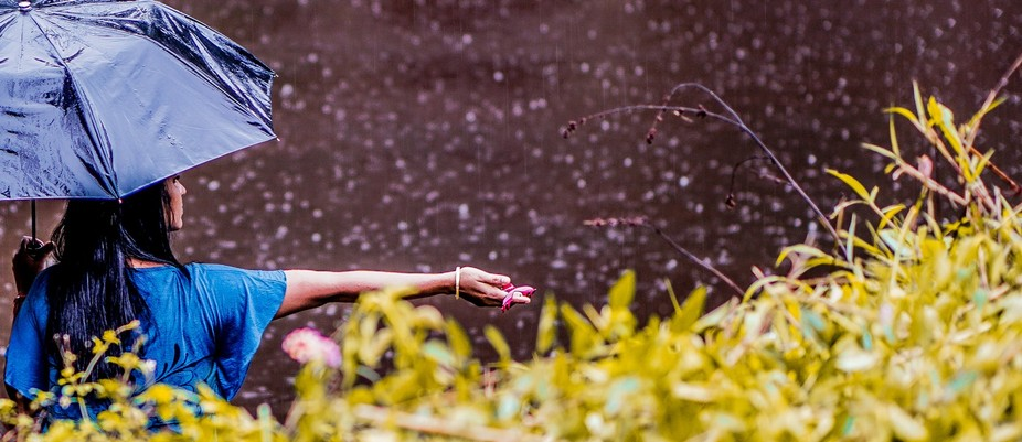 A lovely lady fishing in the pond on a rainy day. The photograph was taken while travelling uphil...