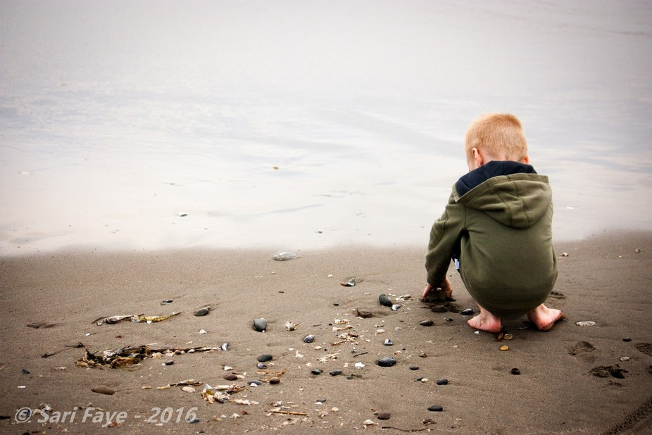 The gritty sand, the smooth shells, the rough seaweed...  He had been waiting three days in the c...