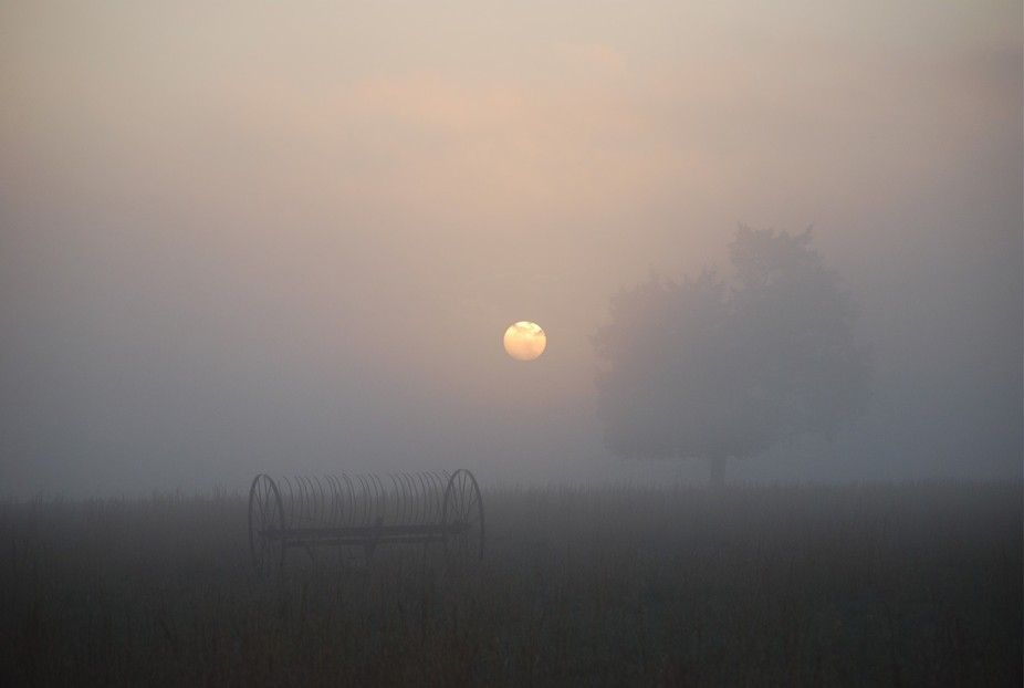 morning,winter,harvest,fog,moon