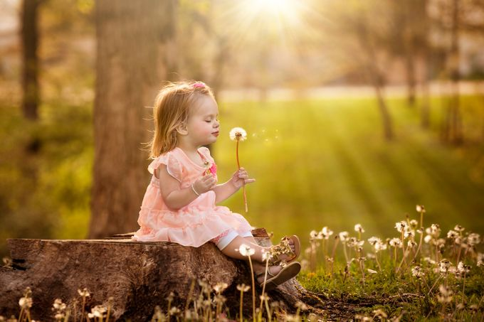 Dandelion Girl by terrylynn - Soft Photo Contest