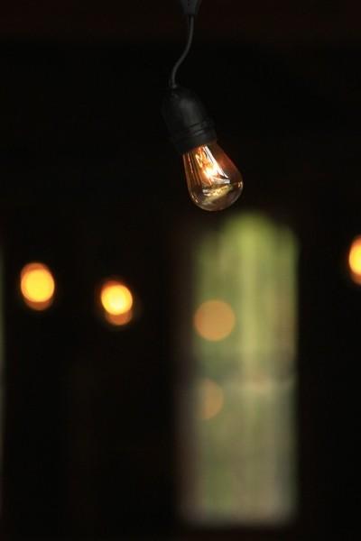 The Lit Bulb