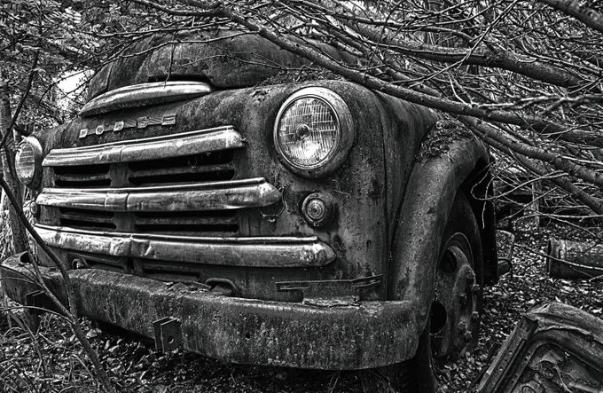 Fogotten truck b&w by roelofvandermerwe - A Black And White World Photo Contest