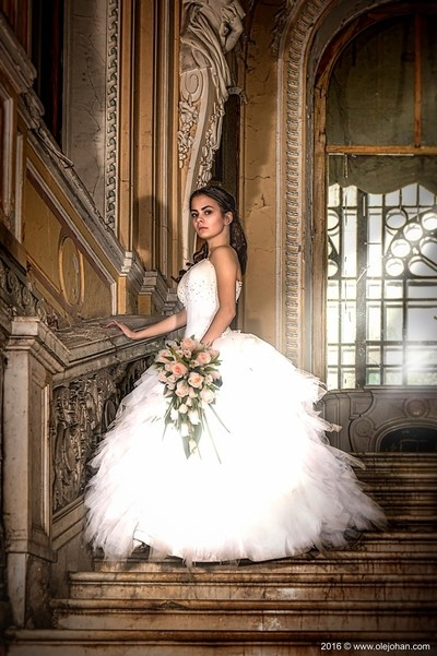 Bride in Brusnitsin Mansion