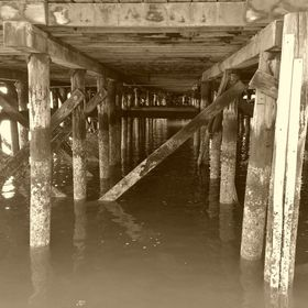It's an amazing view underneath the docks, like a passageway to another world.  It holds its own kind of subtle beauty.  This photo was take...