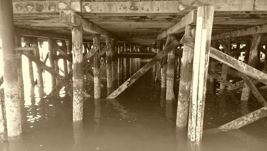 It's an amazing view underneath the docks, like a passageway to another world.  It holds...