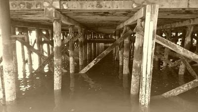 Beneath the docks