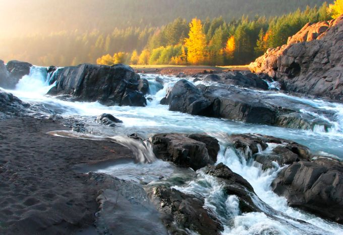 Early morning run by jimpersons - Streams In Nature Photo Contest