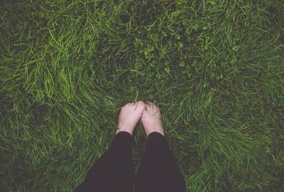 Colorado Grass