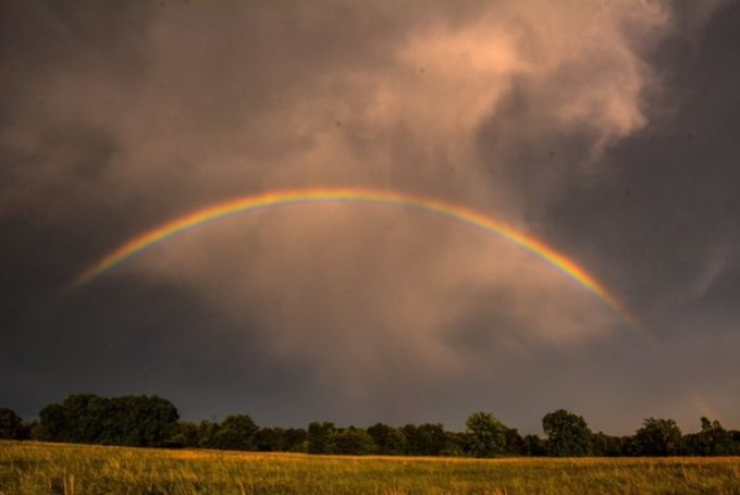 IMG_2733 by outside - Rainbows Overhead Photo Contest