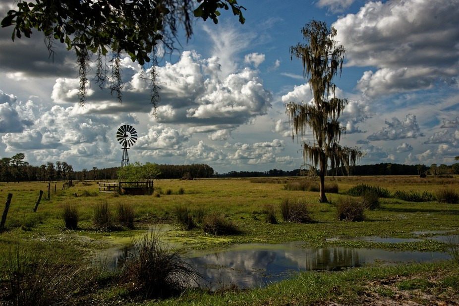 Florida Windmill