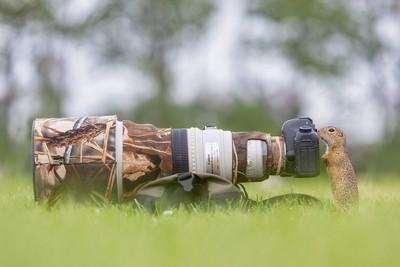 ~ Pro Photography ~