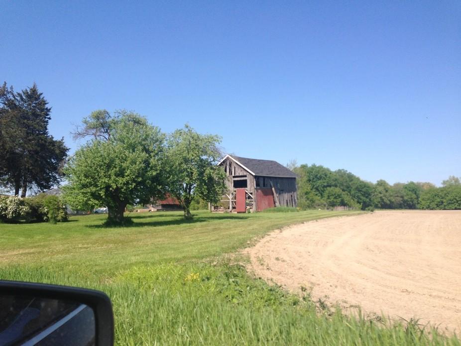 Farm #3