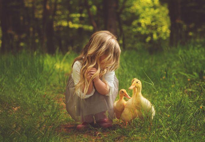 A World Of Yellow Photo Contest Winner