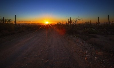 Sunset at Saguaro National Park