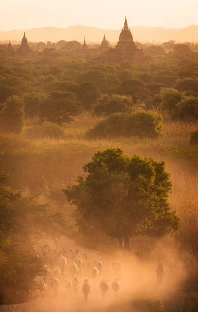 Farmers of Bagan