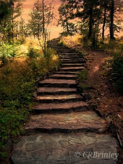 Knox Mountain Stairs