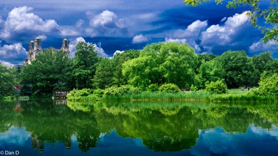 Greenery and Sky Reflection