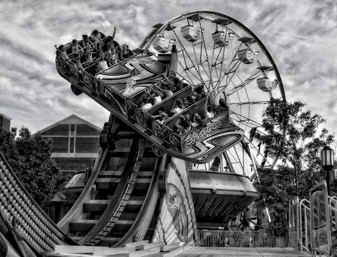 Wild Ride by adavies - Clever Angles Photo Contest
