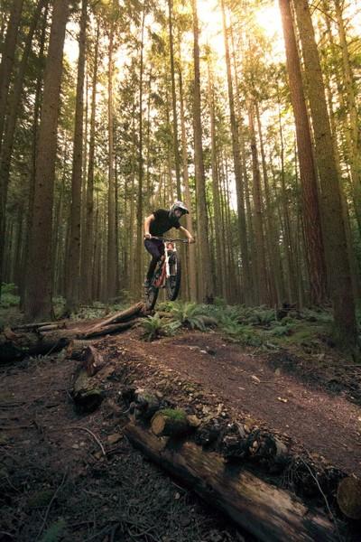 Trail Stoke
