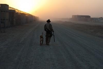 Marine Bomb Dog and Handler