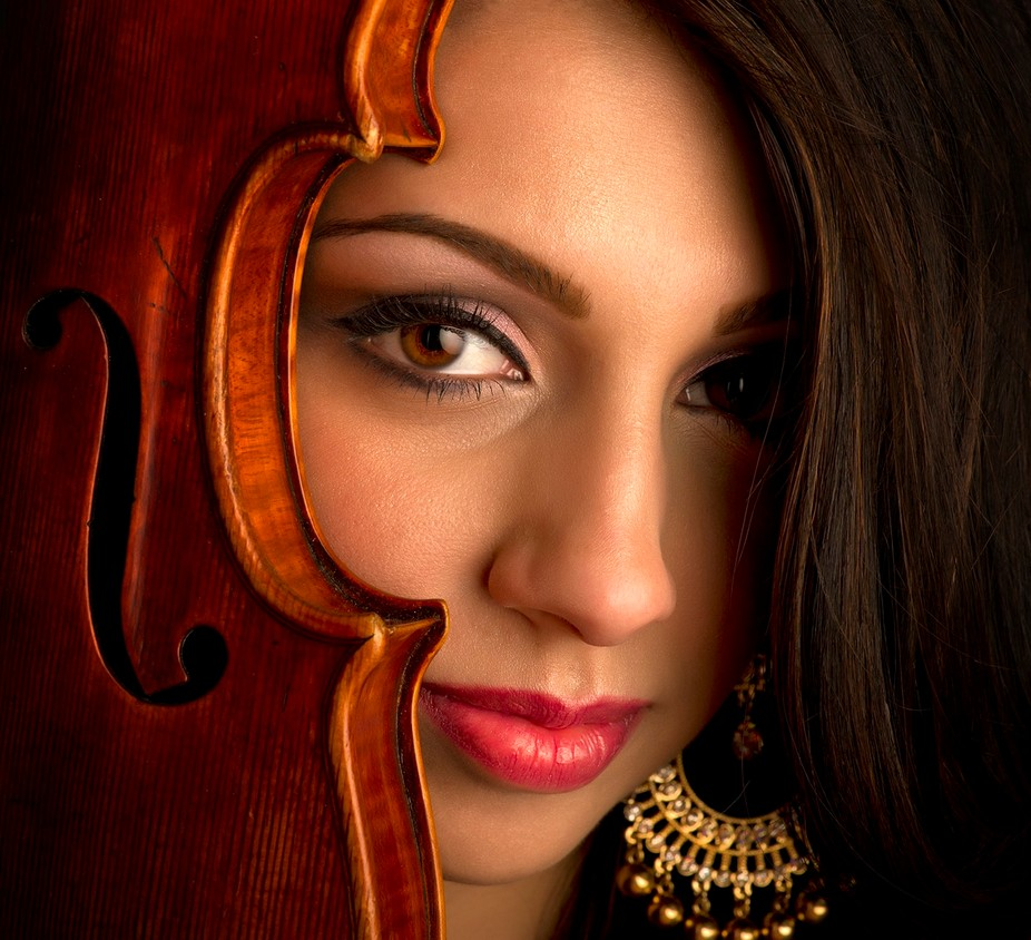 This was a concept for Bollywood Strings, a classical string group that plays Bollywood music