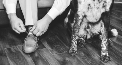 people and puppy feet