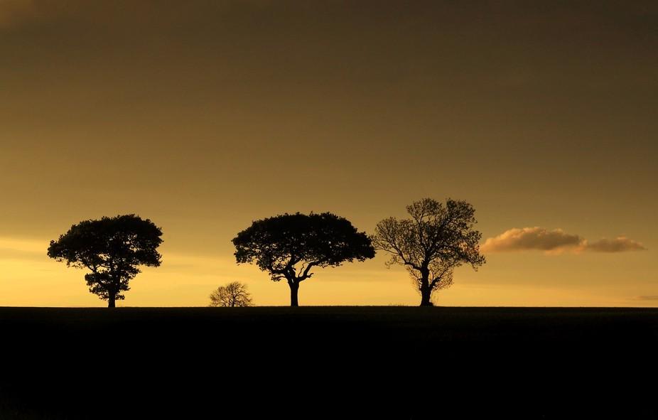 Taken at sunset near my Home at Black Callerton