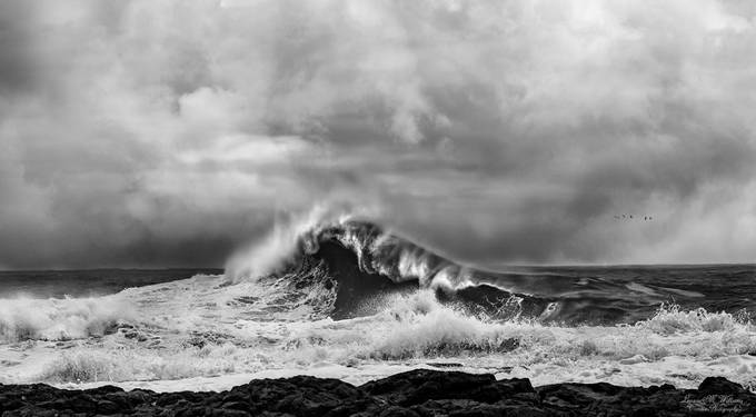 Grey skies by LeanneMWilliams - The Ocean Photo Contest