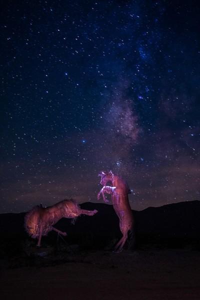 Dominance under the Milky Way