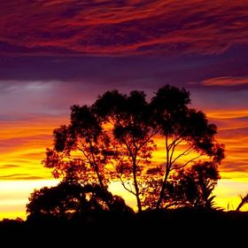 I shot this pic from the top of my driveway in Batemans Bay NSW Australia.  The sunset colours are amazing in Autumn.
