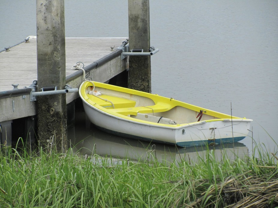 Yellow and White Row Boat