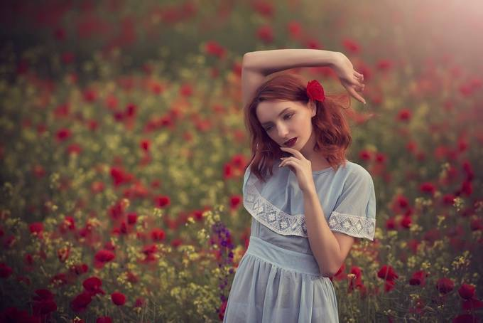 Poppies dream by siph - It Is Red Photo Contest