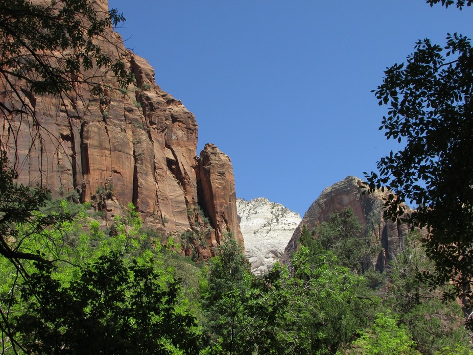 View from the trail to the lower emerald pool at Zion National Park.
