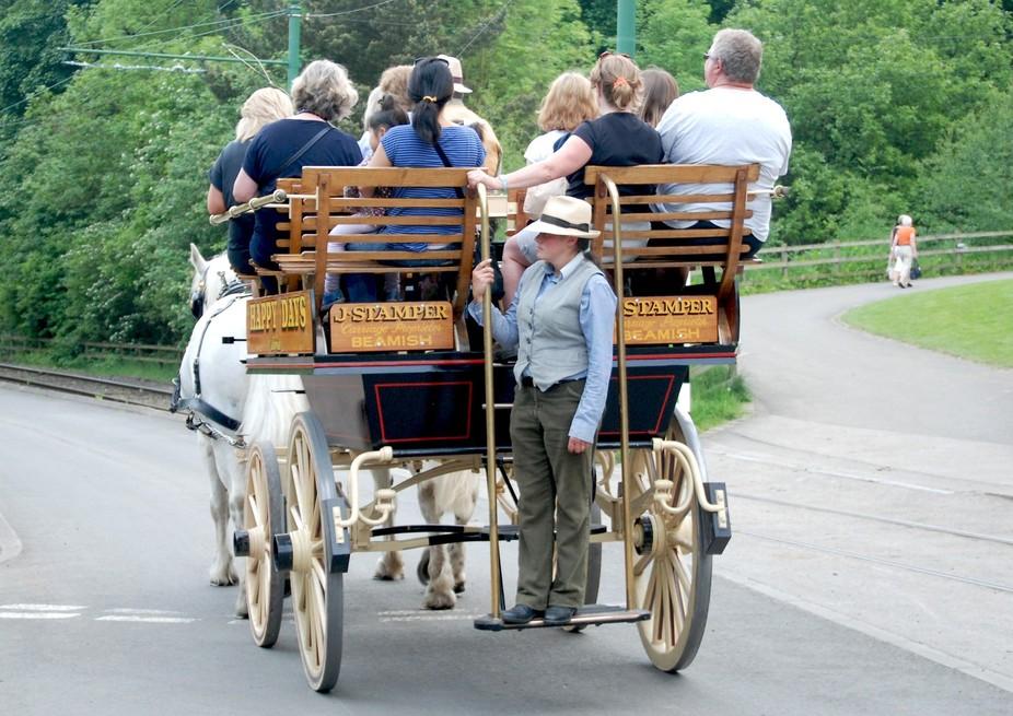 Cart ride 2